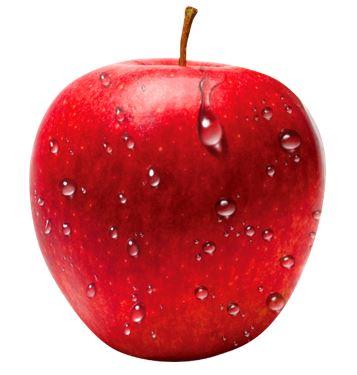 Jablko - obrázek